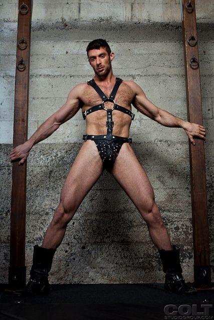 Hairy Gay Porn Star Scott Carter | Daily Dudes @ Dude Dump