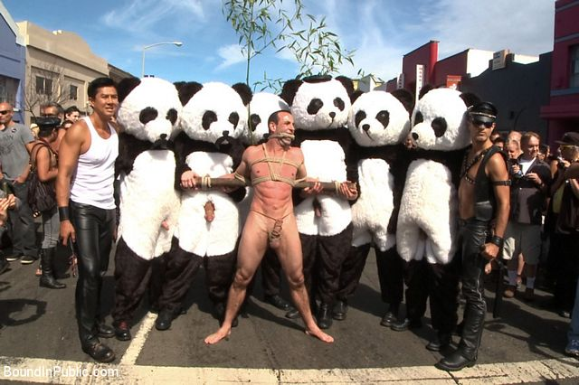 Gay panda toy fetish   Daily Dudes @ Dude Dump