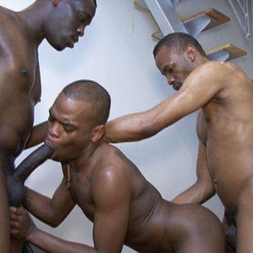 All Black Bareback 3way | Daily Dudes @ Dude Dump