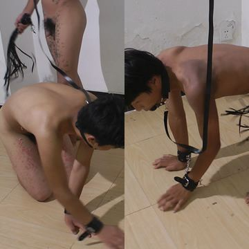 Asian Boy Slaves Doggy Trainning | Daily Dudes @ Dude Dump