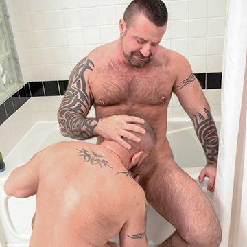 Bathroom Bear Fuckers | Daily Dudes @ Dude Dump