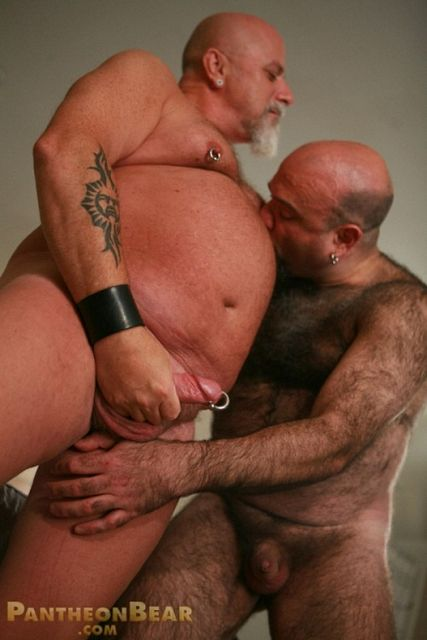 Furry bear lover movie | Daily Dudes @ Dude Dump