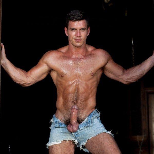 Hairy Gay Porn Star PADDY O'BRIAN | Daily Dudes @ Dude Dump