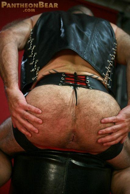 Hairy leather bear   Daily Dudes @ Dude Dump