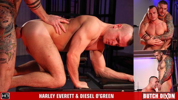 Harley Everett Fucks Diesel O'Green | Daily Dudes @ Dude Dump