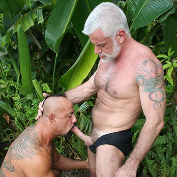 Passionate Daddy Fuck | Daily Dudes @ Dude Dump